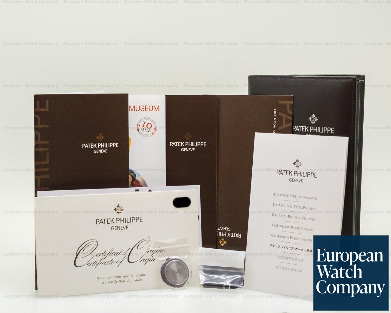 Patek Philippe 5496P-001 Retrograde Perpetual Calendar Platinum Silver Dial