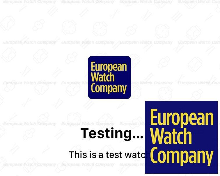 TEST THIS IS A TEST WATCH Ref. 1.0.1.0.1