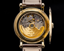 Patek Philippe Retrograde Perpetual Calendar 5159J 18K Yellow Gold Ref. 5159J-001