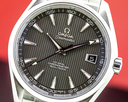 Omega Aqua Terra Co-Axial Chronometer Grey Dial SS/SS Ref. 231.10.42.21.06.001