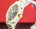 Omega Aqua Terra Co-Axial Chronometer 18k Rose Gold / SS Ref. 231.20.42.21.06.003